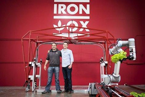 Основатели Iron Ox выращивают салаты с помощью роботов