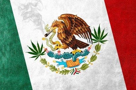 Мексика легализовала каннабис