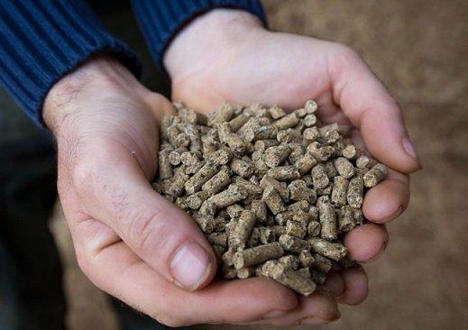 Mootral разработал эко-корм, способный снизить выбросы метана