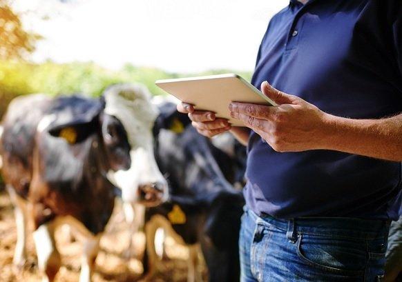 Ozon обучит фермеров азам торговли в интернете